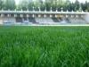 fk-baumit-jablonec-hriste-prirodni-travnik-036