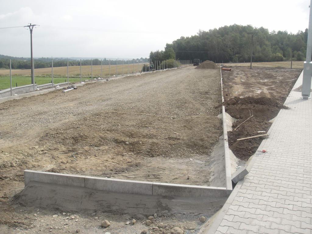 rynholec-hriste-umely-travnik-076